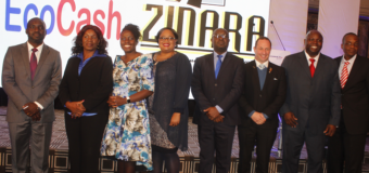 EcoCash Integrates With Zinara For Mobile Money Payments At Tollgates